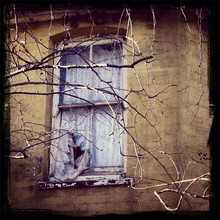 Window In Weathered Building