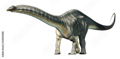 Apatosaurus was a sauropod dinosaur. A herbivore  it lived in during the Late Jurassic Period in what is now North America. On a white background. 3D Rendering