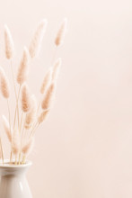 Home Interior Floral Decor. Dried Flowers, Spikelets In Vase On White Background.