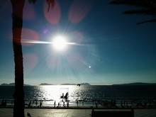 Seascape And Sunflare