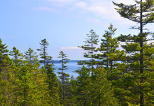 Scenic Mountain Top View Looking Down Onto Maine Coastline Landscape With Pine Trees, Blue Sky And Ocean In The Background. Copy Space.