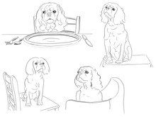 Four Drawings Of A Cute Cavalier King Charles Spaniel Dog In Various Poses.
