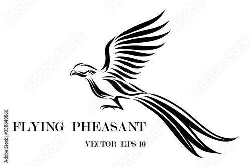 Obraz na plátně Line art vector logo of pheasant that is flying.