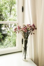 Close-up Of Flowers In Vase On Window Sill At Home