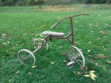Rusty Tricycle In Grassy Field