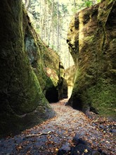 Alley Amidst Moss Covered Rocks In Forest