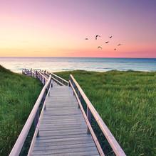 Einsamer Weg Zum Meer - Sylt