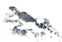 Lizard Dragon Art Drawing Vintage Illustration