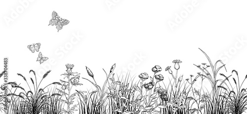 Photo Field butterflys over flowers and grass landscape, black and white