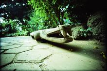 Wooden Crocodile On Footpath In Park