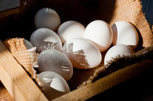 White Chicken Eggs Lying In A ...