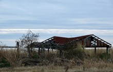 Ruined Shed In Field
