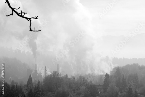 Foto View Of Forest In Smoke