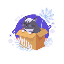 Cartoon Cat Staying In The Box And Thinking About Life Meaning. British Cat Can Be Delivered To Someone's Home. Completed And Isolated Vector Illustration.