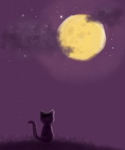 Cat On The Moon