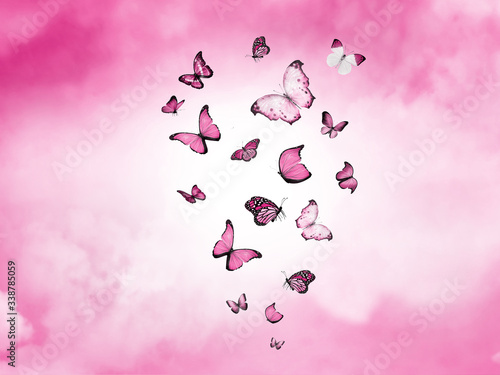 Color sky with clouds and butterflies as background Canvas Print
