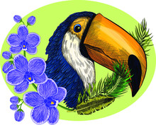 Head Bird Parrot Toucan Black Yellow And Flowers An Orchid With Leaves A Wreath On A Green Background Print Vector Illustration