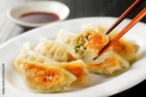 Fototapeta 焼き餃子 Gyoza (Japanese grilled dumplings) obraz