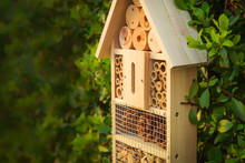 Insect Hotel In A Green Hedge Gives Protection And A Nesting Aid To Bees And Other Insects