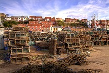 Whitby Lobster Creels