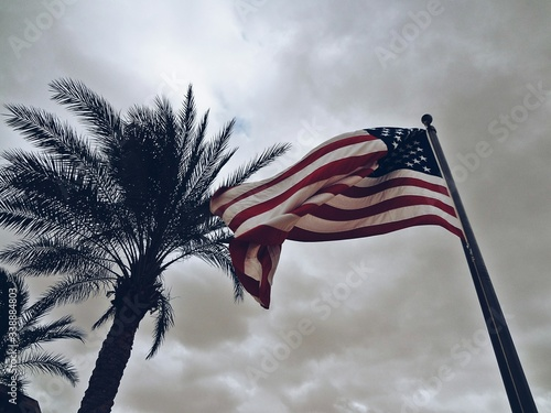 Low Angle View Of American Flag By Palm Tree Against Cloudy Sky - fototapety na wymiar