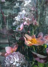 Multicolored Flowers Inside In...
