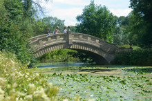 Stone Bridge With Water Lilies