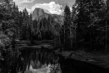 Scenic View Of Merced River Flowing In Forest