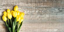 Beautiful Tulips On Wooden Bac...