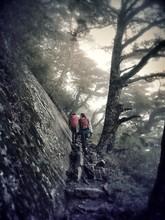 Hikers Walking In Rock In Forest