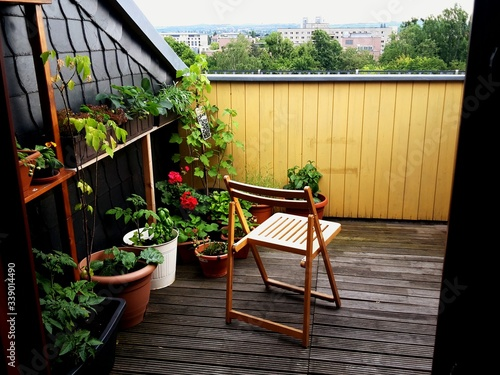 Fotografie, Tablou Flower Pots At Balcony Of House