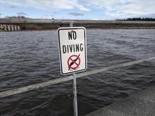 No Diving Sign At Lake Washing...