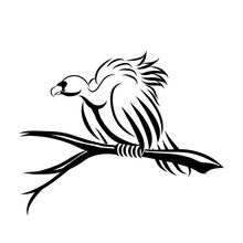 Vector Line Art Illustration Of A Vulture. It Is Perching On A Dead Tree To Wait For The Victim.