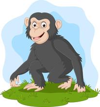 Cartoon Happy Chimpanzee In Th...