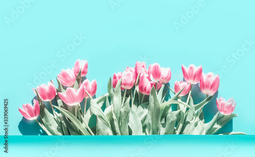 Obraz na plátně Pretty pink pale tulips flowers bunch at turquoise blue background