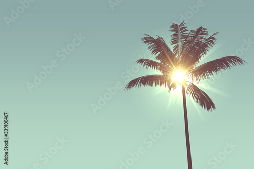 Obraz Tropical palm tree silhouette against bright sunlight. 3d rendering - fototapety do salonu
