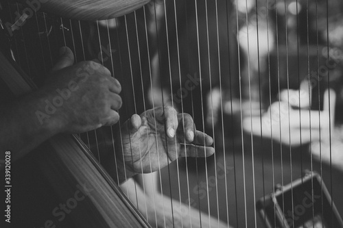 Vászonkép Cropped Image Of Hands Playing Harp