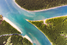 Aerial View Of River And Mangr...