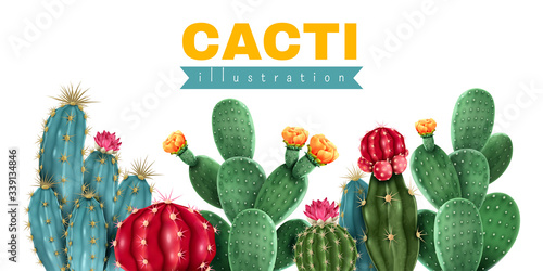 Fotografija Cacti Colored Background