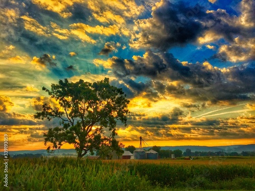 Fototapety, obrazy: Scenic View Of Field Against Cloudy Sky During Sunset