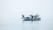 Shrimp Boat In The Mediterrane...