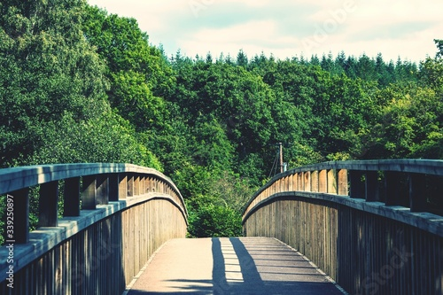 Footbridge Leading Towards Trees Against Sky Canvas Print