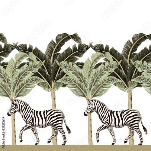 Vintage african zebra wildlife animal, banana tree floral seamless border white background Canvas Print
