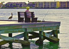 Low Angle View Of Man Fishing On Pier