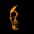 Skull portrait silhouette in contrast backlight.