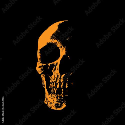 Fotografie, Tablou Skull portrait silhouette in contrast backlight.