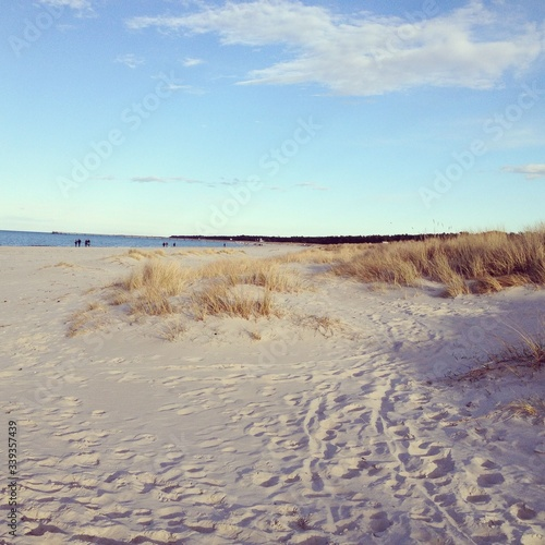 Scenic View Of Sandy Beach Against Sky #339357439