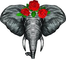Head Of Grey African Elephant With A Wreath Of Red Roses