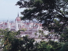 Hungarian Parliament Building By River With Trees In Foreground