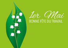 Muguet - 1er Mai